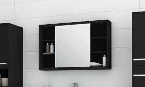 Cabinet in the bathroom with a mirror B9052