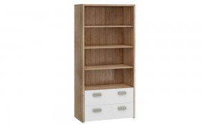 Cupboard with shelves W3256